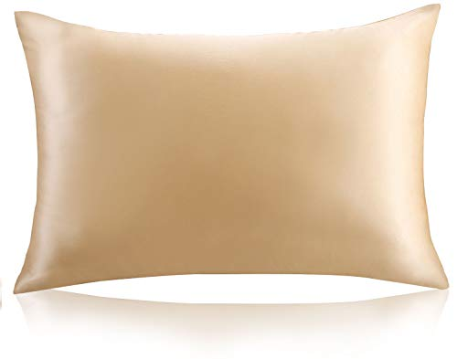 """ZIMASILK 100% Mulberry Silk Pillowcase for Hair and Skin Health,Both Side 19 Momme Silk,1pc (Standard 20''x26"""", Champagne)"""