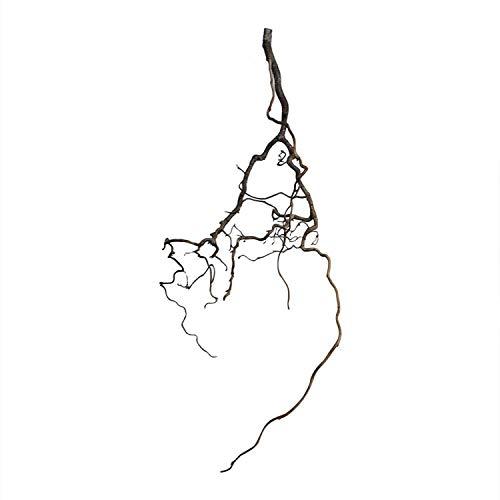 Korkenzieherast-Deko (ca. 40 x 20 cm): Korkenzieheräste - Korkenzieherast Dekoration - AST klein - Wohnraum-Deko