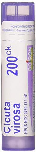 Boiron Cicuta Virosa 200ck, 80 Count