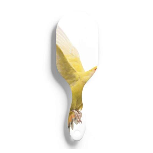 ZANSENG Cepillo para el Cabello, Agapornis Roseicollis Flying Agapornis Rosyfaced, Conocido Cepillo para el Cabello con cojín de Aire para Peine de cojín de Aire para Mujeres y niñas