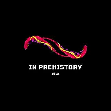 In Prehistory