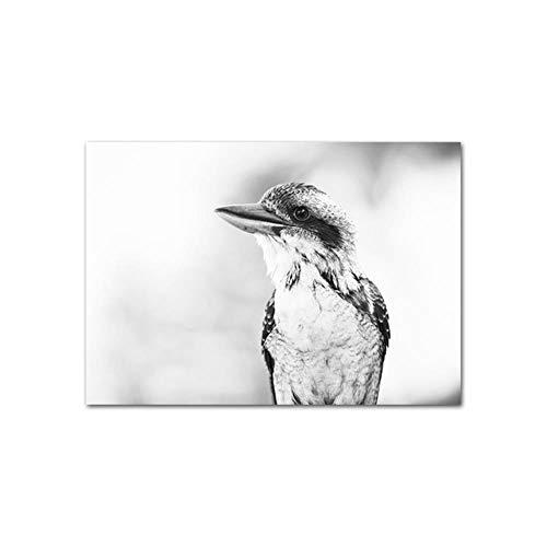 Kookaburra vogel zwart wit poster artwork dier canvas print Scandinavische stijl kunst hijgen muur foto voor woonkamer decoratie, foto 1,30x45cm geen frame