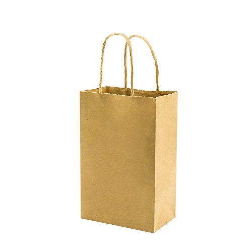 100 Pack 5.25x3.25x8 inch Brown Small Paper Bags with Handles Bulk, bagmad Gift Paper Bags, Kraft Birthday Party Favors Grocery Retail Shopping Bag, Craft Bags Takeouts Business (Plain Natural 100pcs)