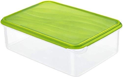 Rotho Rondo große Frischhaltedose 5l mit Deckel, Kunststoff (PP) BPA-frei, grün/transparent, 5l (31,5 x 24,0 x 10,0 cm)