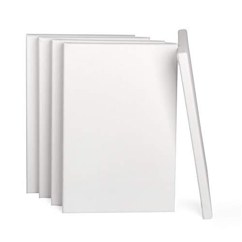 ewtshop® Leinwände mit Keilrahmen, 100% Baumwolle, 5 Stück, 20x30 cm, Canvas, Kunstleinwand, Leinwand Tafel, weiß