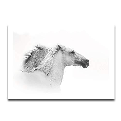 HLL Kunst Leinwand Drucken Wandkunst Malerei Zeitgenössische Schwarze und Weiße Pferd Bild Moderne Kunstwerk Wohnkultur KEIN Rahmen,L