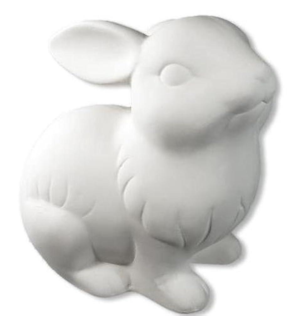 Garden Bunny Rabbit - Paint Your Own Ceramic Keepsake
