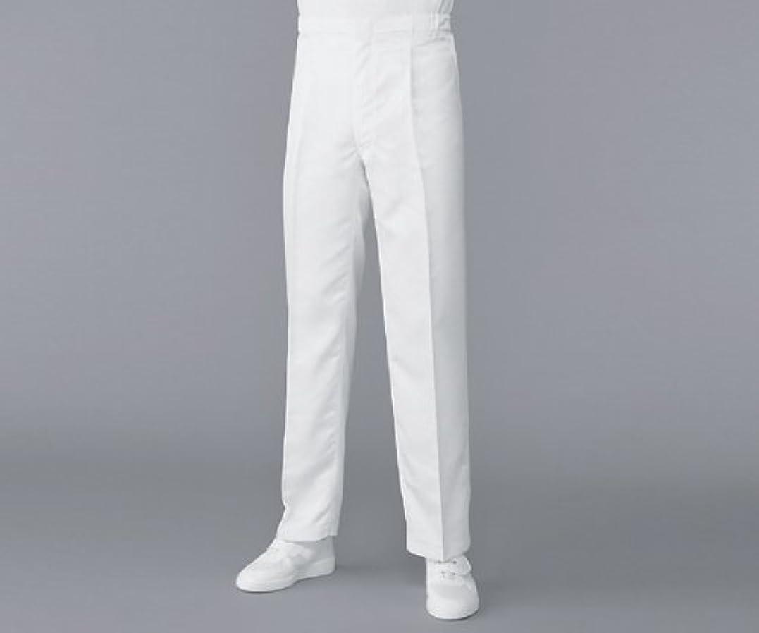 胃成熟したコピーアズワン (AS ONE) 無塵衣AS304Aパンツ ホワイト L