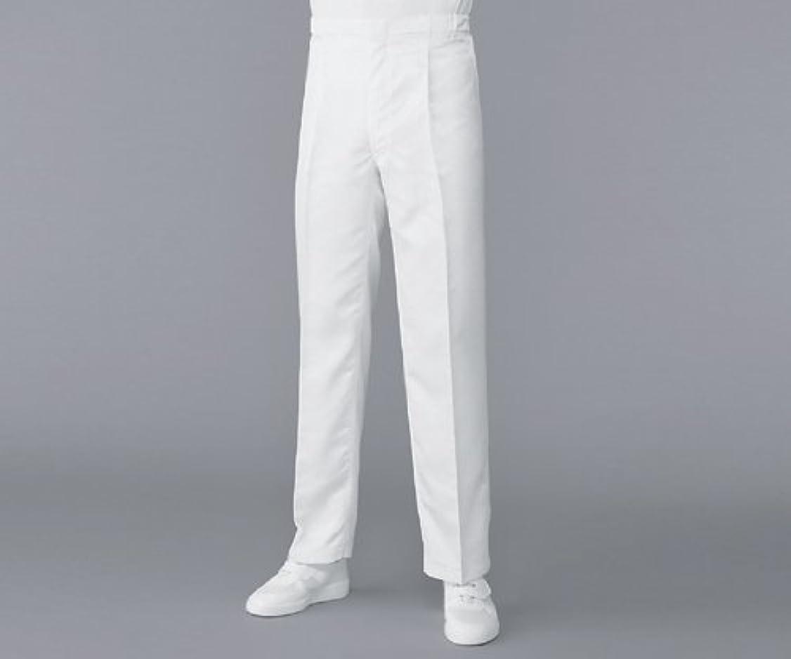 あからさまバッジ種類無塵衣AS304Aパンツ ホワイト M