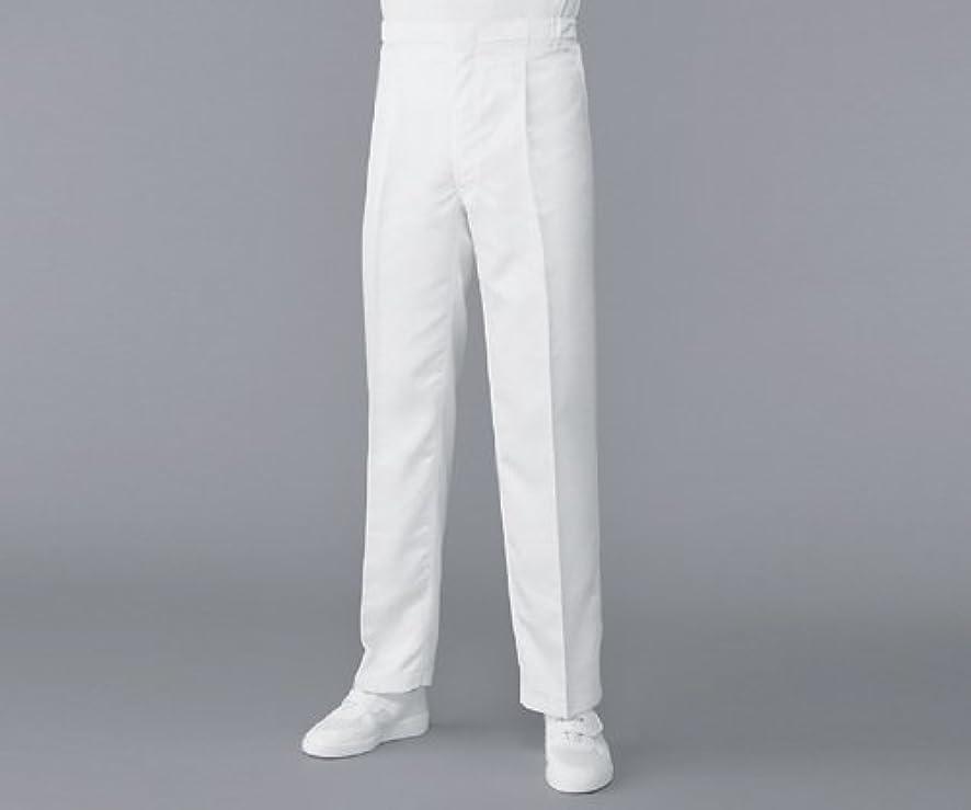 理想的出撃者背骨アズワン (AS ONE) 無塵衣AS304Aパンツ ホワイト LL