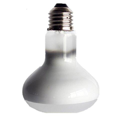 Générique Eclairage du Jour Ampoule Globe Se Chauffant pour Animaux Reptible - Blanc E27-40w