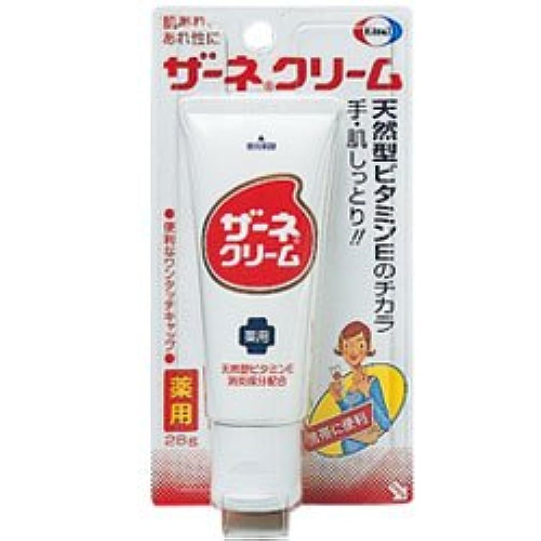 アミューズメント農業有効化【エーザイ】ザーネクリーム 28g☆☆ ×5個セット