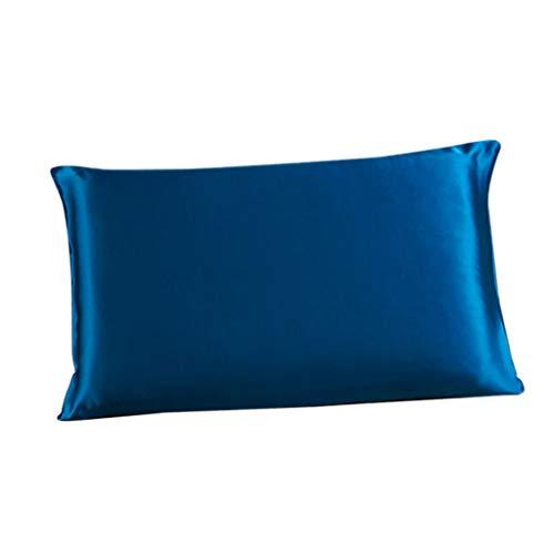 SDENSHI Funda de Almohada de Seda de Morera Sólida Funda de Almohada de Seda de Doble Cara con Cremallera - Azul Real, Individual