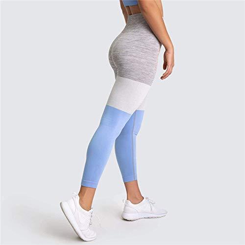 GUOYANGPAI Pantalones sin Costuras Tejidos de Leggins Deportivos, Leggings Deportivos de Costura, Leggins elásticos de Gimnasio para Mujer,Azul,L