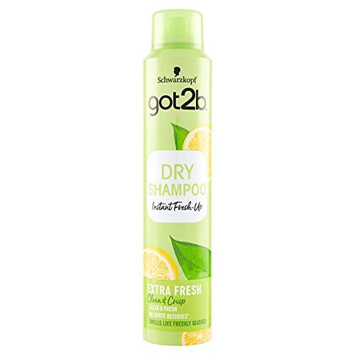 Shampoo Seco marca Got2B