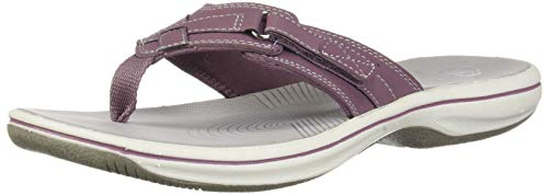 CLARKS Women's Breeze Sea Flip-Flop Purple Synthetic 060 M US