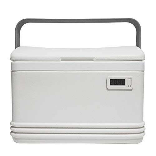 Kühlschrank, 8 Liter 2 in 1 Digitaler Mini Kühlschrank Kühlbox Warmhaltebox Campingkühlschrankvolt, Kühlt Bis Unter Umgebungstemperatur