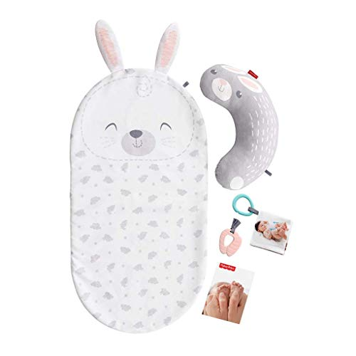 Fisher-Price Baby Bunny Massage Set, 1.19 kg