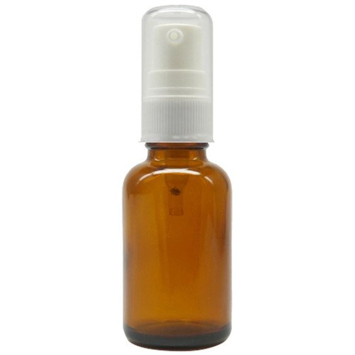 社交的絶対のライターアロマアンドライフ (D)茶褐色ポンプ瓶30ml 3本セット