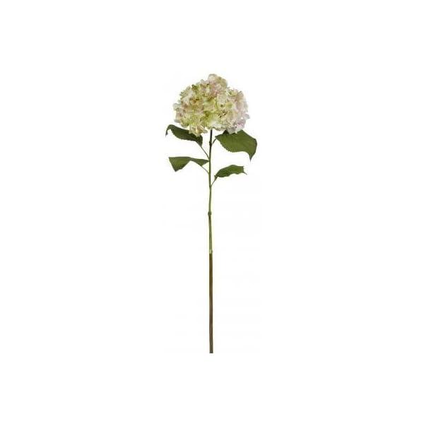 Winward Silk Flowers Artificial 95624.PKGR Hydrangea L.-Pink/Green