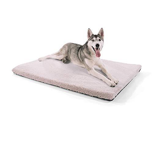 brunolie Luna extra große Hundedecke, orthopädisch, atmungsaktiv und waschbar, Hundematte mit gelenkschonendem Memoryschaum in Beige, Größe XL (120 x 85 x 5 cm)