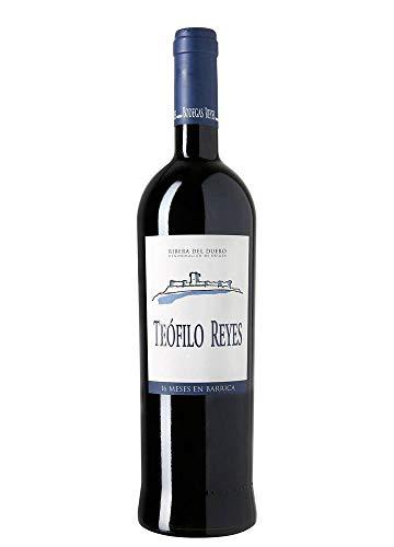 Teofilo Reyes Vino tinto crianza - 750 ml