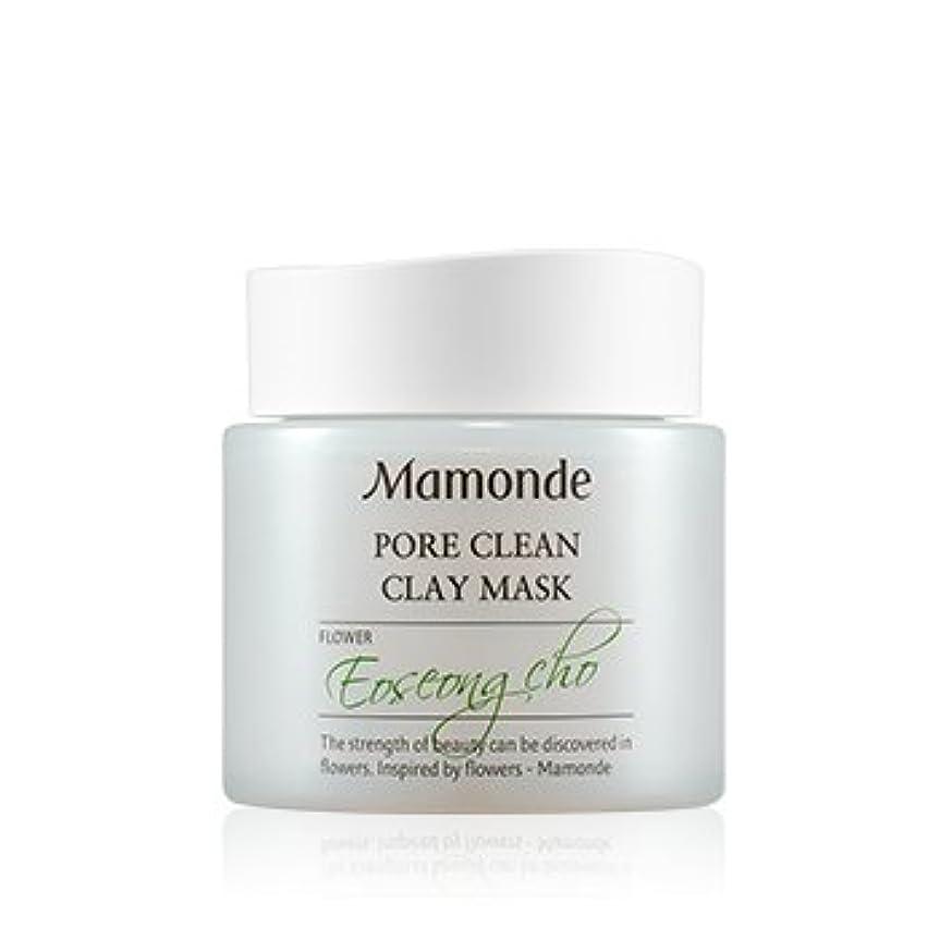 代名詞起きる言い直す[New] Mamonde Pore Clean Clay Mask 100ml/マモンド ポア クリーン クレイ マスク 100ml [並行輸入品]