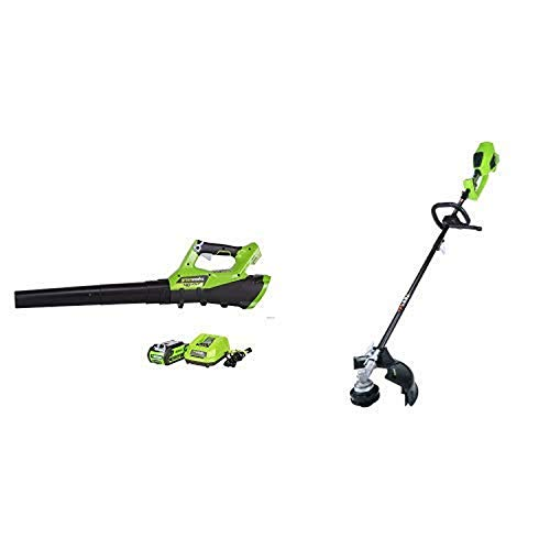 Best Price Greenworks 40V 110 MPH - 390 CFM Cordless Jet Blower, 2.5 AH Battery Included 2400802 wit...