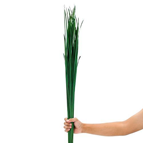 Leewadee Dekobündel für Bodenvasen Trockengesteck Dekogras Dekozweige, 120 cm, Getrocknetes Natur-Gras, grün