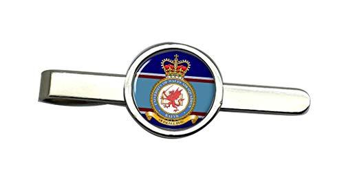 Giftshop UK Universidad de Gales Aire Escuadrón Corbata Broche