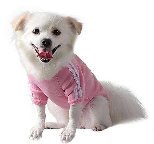 QiCheng&LYS Dog Hoodie,Jersey Perros,Sudadera Perro Ropa ParaCachorros, Sudadera para Chihuahua Cómodo Y Cálido (Rosa, Small)