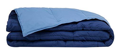 Casatex Piumino Singolo Bicolore con Imbottitura in 100% Piuma D'Oca Naturale - Colore Bluette/Azzurro
