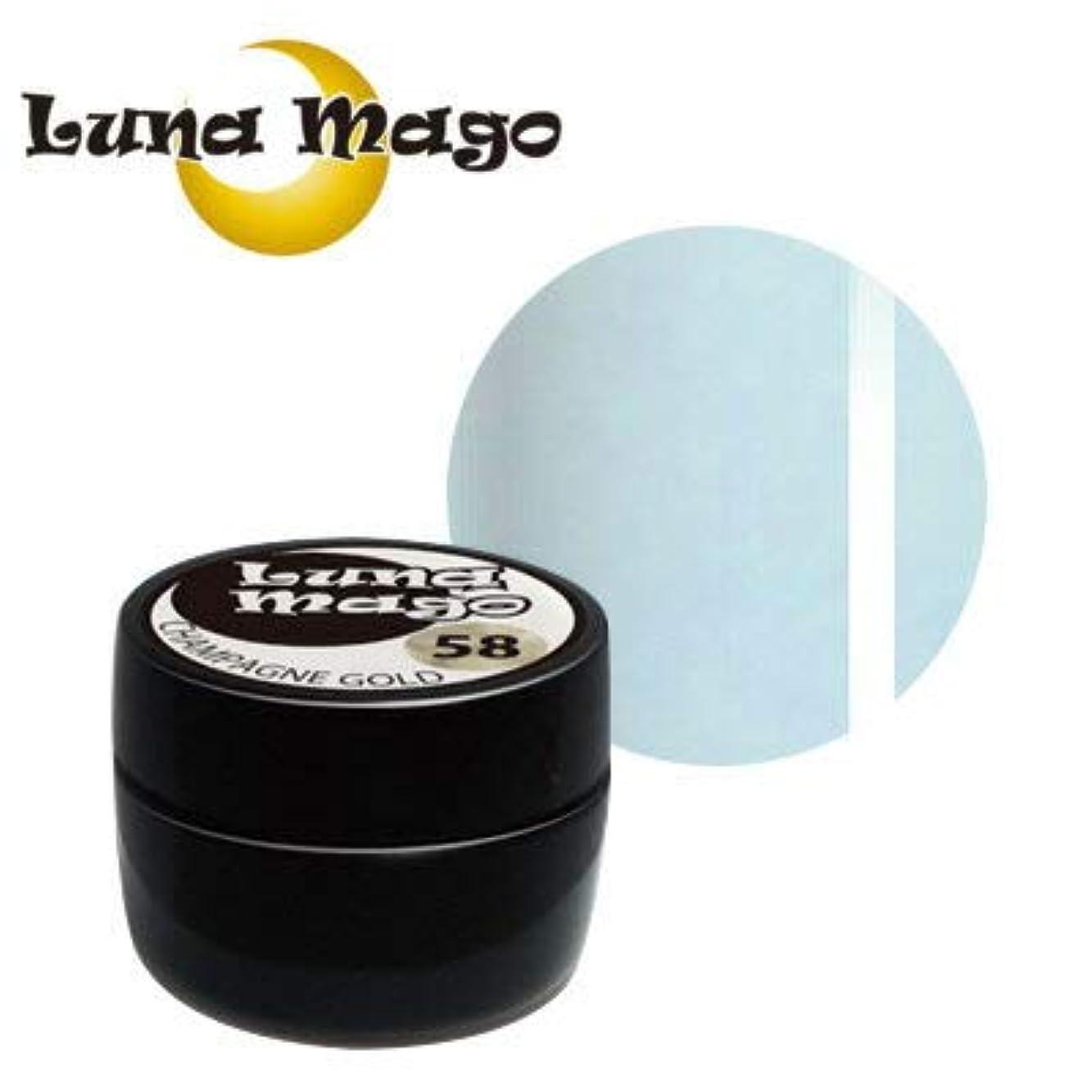 一般的なフルーティーモジュールLuna Mago カラージェル 5g 043 ラインブルー