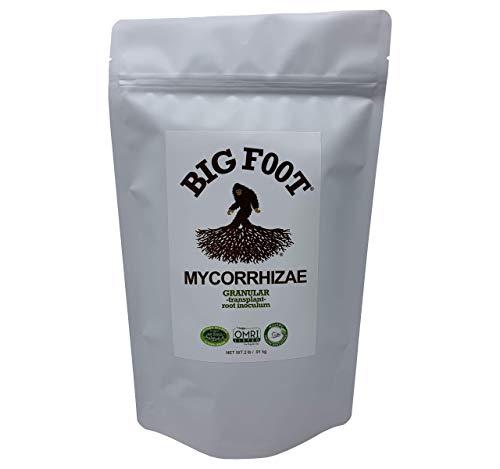 Big Foot Mycorrhizal Granular Formula