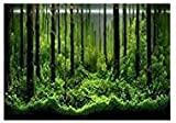 PVC Fish Tank Background Adhesive Underwater Forest Tank Background Poster Backdrop Decoration Paper (48.03 x18.11in)