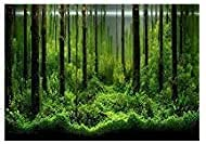 PVC Fish Tank Background Adhesive Underwater Forest Tank...