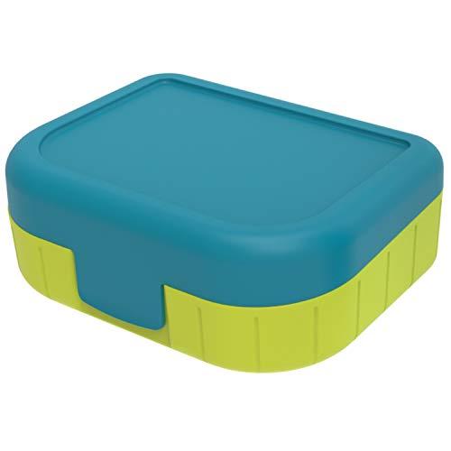 Rotho Memory Kids Boîte à Vespas 1L avec Couvercle et Fermeture à Clic, Plastique (PP) sans BPA, Bleu, 1L (16,6 x 13,3 x 6,1 cm)