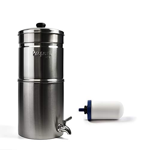 Propur Traveler Brushed Countertop Gravity Water Filter System - Removes Fluoride, Lead, Chlorine, Microplastics, and many more Contaminants - Includes 1 ProOne 5-inch Filter Element