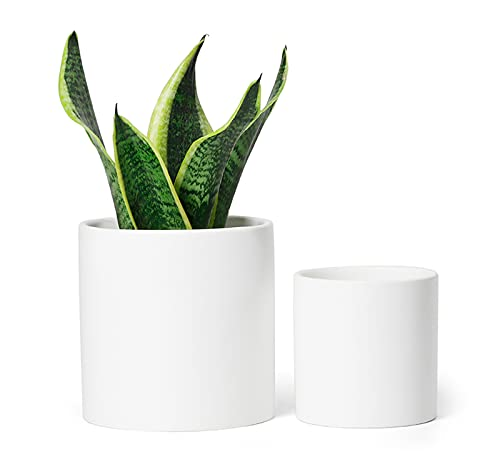 Greenaholics White Ceramic Plant Pots - 6 Inch + 4.7 Inch Indoor Planters with Drainage Holes for Flowers Small Modern, Set of 2