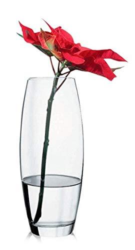 Botanica Pasabahce 43966 vaas glas met buik, elegant, hoog, hoogte 26cm