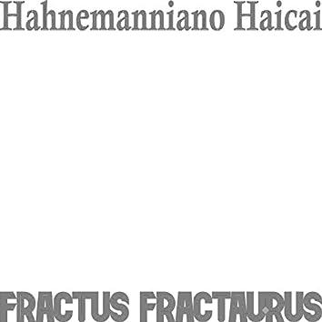 Hahnemanniano Haicai