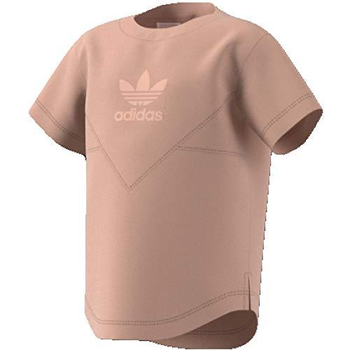 adidas I M Ft tee Camiseta, Unisex bebé, Beige (percen), 74 (6/9 Meses)