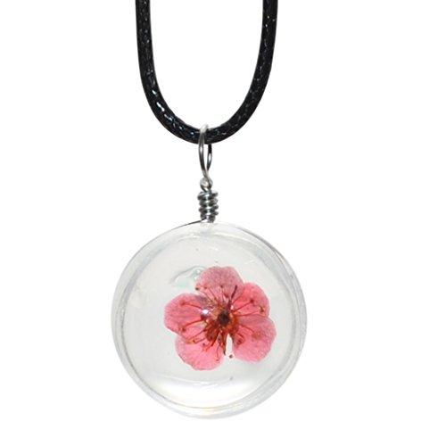 Bobury Verdaderas Flores secas Naturales Collares Colgantes de Cristal Redondo Collares de Cuerda de Cuero de Las Mujeres