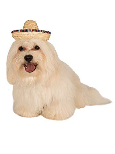 Rubies Sombrero Officielle Pet Costume pour Chien – Taille S/M