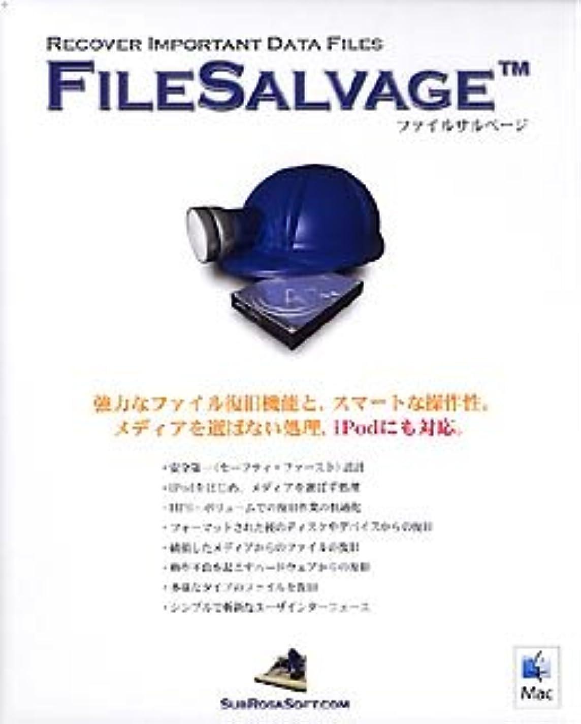 ぬるい労働者知覚FileSalvage