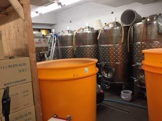 深川ワイナリー 果実酒 スパークリングワイン 微炭酸 白ワイン 山梨 甲州 無ろ過 スパークリング オレンジ 2018 750ml 東京のワイナリー