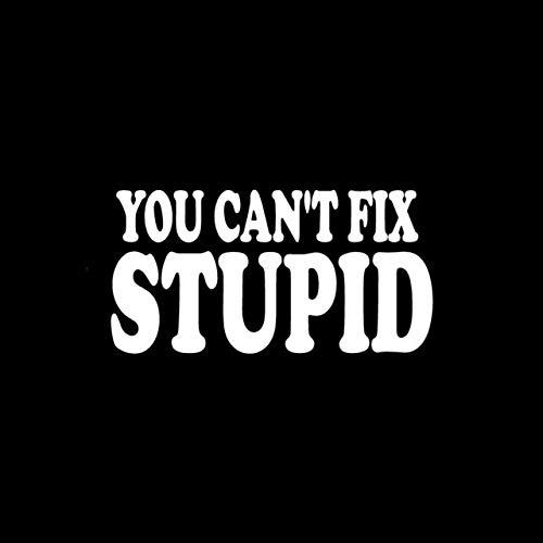 A/X Sticker de Carro 15 CM * 7,5 CM Divertido Que no Puedes Arreglar estúpido calcomanía Pegatina para Ventana de Coche Vinilo Negro/Plateado Estilo de Coche C11-0456Plata