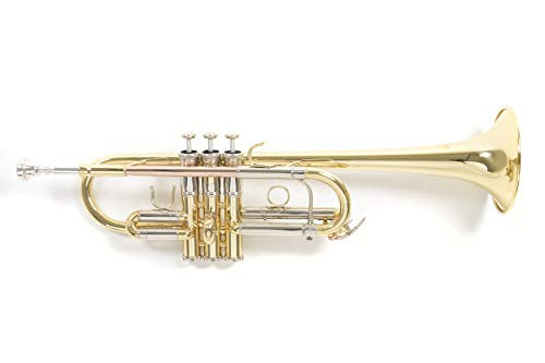 Roy Benson Rb701088 Tromba in Do Tr-402C, Finitura Laccata, Astuccio Rettangolare