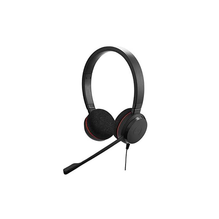 Jabra Evolve 20 Stereo Headset – Casque Filaire pour VoIP Softphone avec Annulation Passive du Bruit – Câble USB avec…