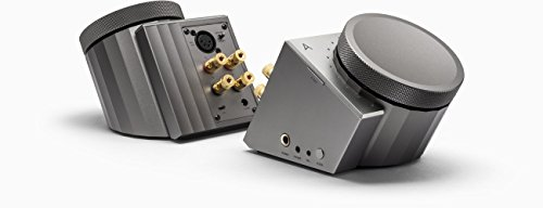 Astell & Kern Acro L1000–Verstärker mit Doppel-DAC für Headsets und Lautsprecher